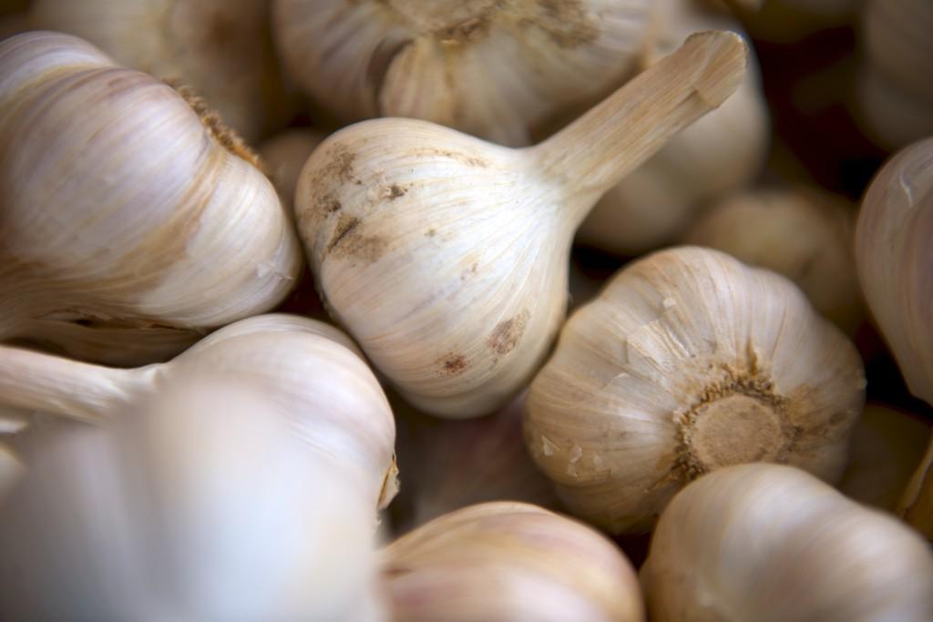 Česnek pro zdraví a imunitu
